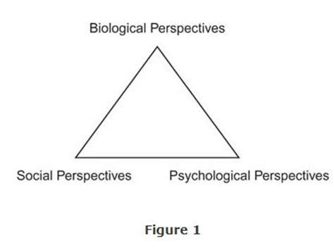 The Psychodynamic Perspective Noba