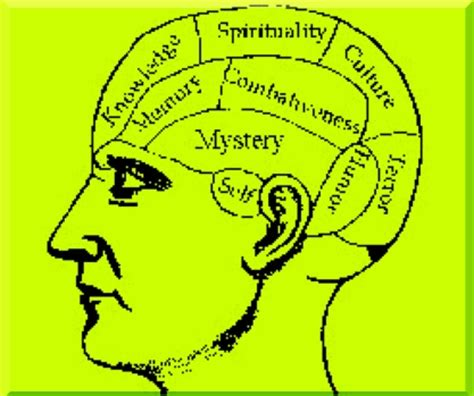Psychodynamic Theory Rooted In Freud Essay - MajorTests